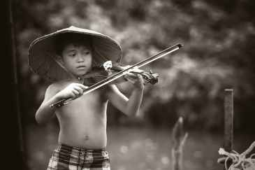 talent, violin