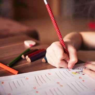 academics, school, college, write, success