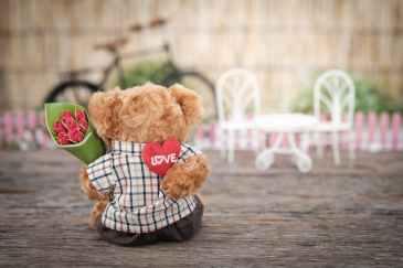 love, roses, valentine
