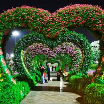 love, beauty, flowers