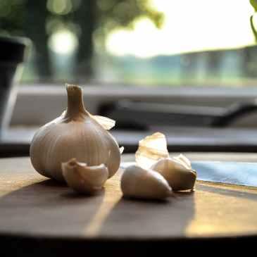garlic-kitchen-food-fresh-